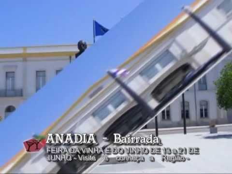 ANADIA   - BAIRRADA