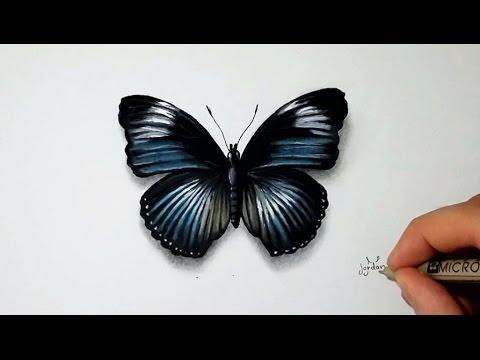 Comment dessiner un papillon tutoriel 2 youtube - Dessin de petit papillon ...