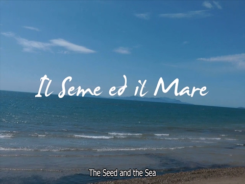 Il Seme ed il Mare - The Seed and the Sea  YouTube
