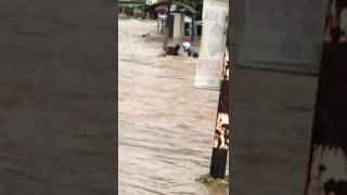 Gambar cover Lost in Flood rains and found dead later