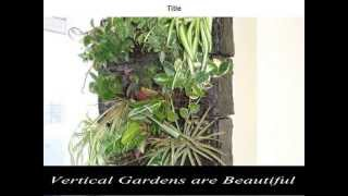 Vertical Gardening Pots | Vertical Gardening | Diy Vertical Gardening | Ideas | How To