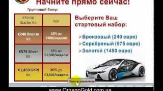 ***OrganoGold - тренинг, Александр Цыбулевский, 22 февраля 2012