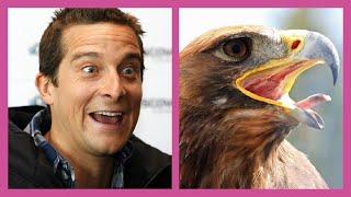 ✅ ЗНАМЕНИТОСТИ ПОХОЖИЕ НА ЖИВОТНЫХ | Animals That Look Like Celebrities!