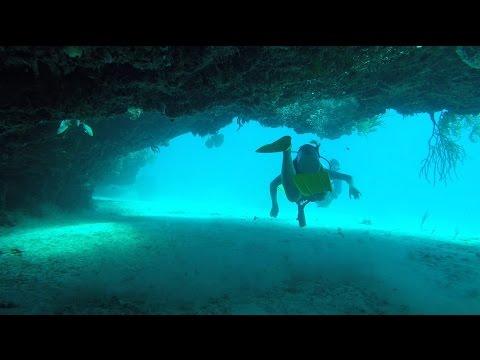 Riu Yucatan Mexico Scuba Caribe Diving - BEST DIVE at Sabalos