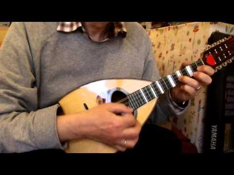 J. S. Bach - Jesus Joy of Man's Desiring - Mandolin Solo