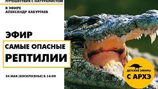 Детский эфир «Самые опасные рептилии» в рамках рубрики «Путешествия с натуралистом»