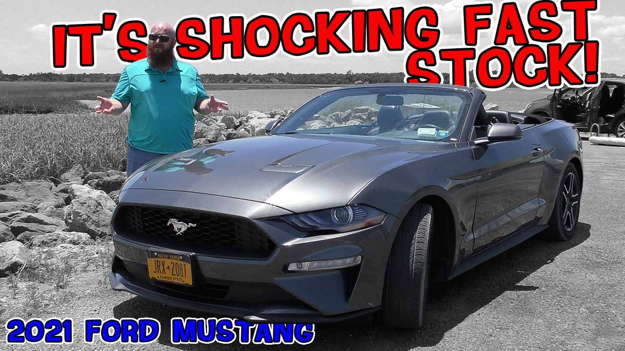 Rental Car Review: 2021 Ford Mustang is Shockingly Fast! CAR WIZARD can't believe the EcoBoost power