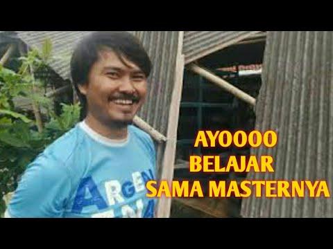 BELAJAR SAMA MASTER CUPANG BANG NINO ( PART 2 )