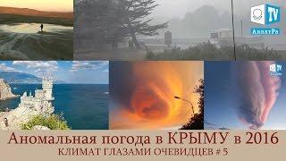 Аномальная жара, дождь, гроза, шквальный ветер в Крыму. Климат глазами очевидцев. Выпуск 5(C 24 по 30 июня в Крыму сохранялась аномально жаркая погода со среднесуточной температурой воздуха выше клима..., 2016-08-16T16:53:36.000Z)