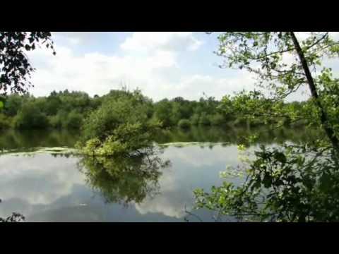 Nature: A lake in the Lozerheide in Bocholt (Belgium)
