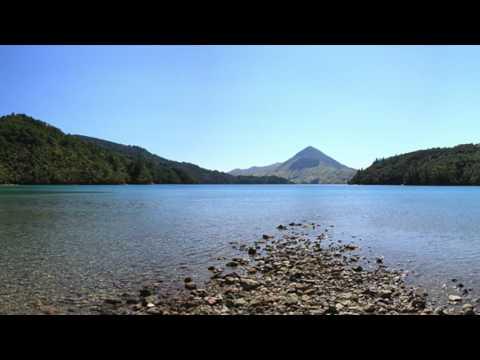Savill Bay, Marlborough Sounds, New Zealand