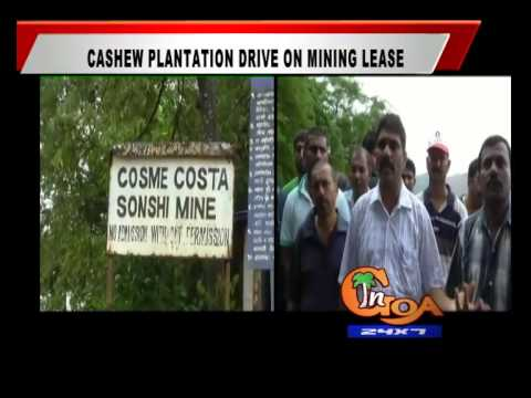 CASHEW PLANTATION DRIVE ON MINING LEASE