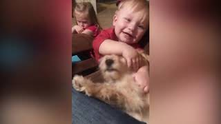 Funny Baby Playing With Baby Animals   Funny Fails Baby Video