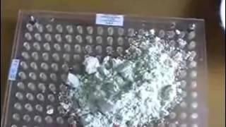 видео Капсулятор
