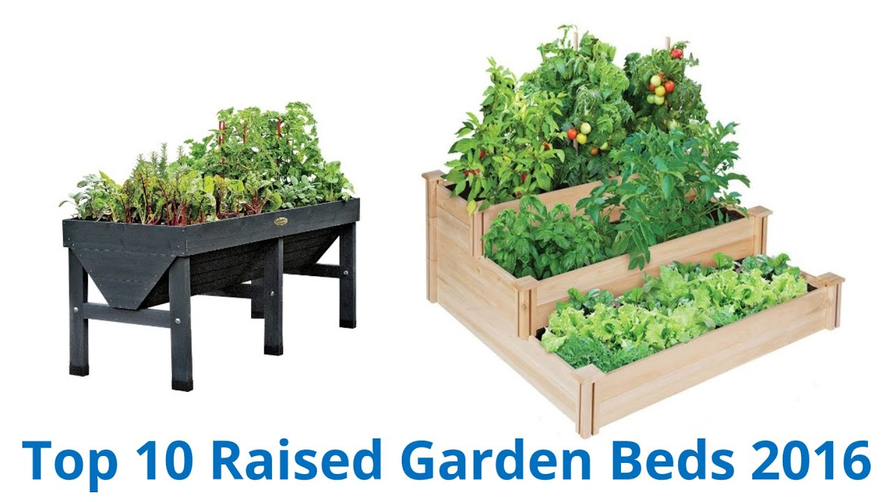 10 Best Raised Garden Beds 2016