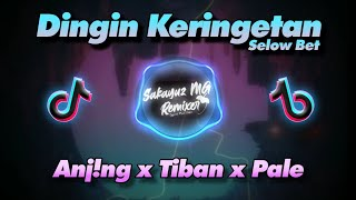 Download lagu Dj Dingin Keringetan Selow Bet Dah NEW 2021 | Sakayuz MG