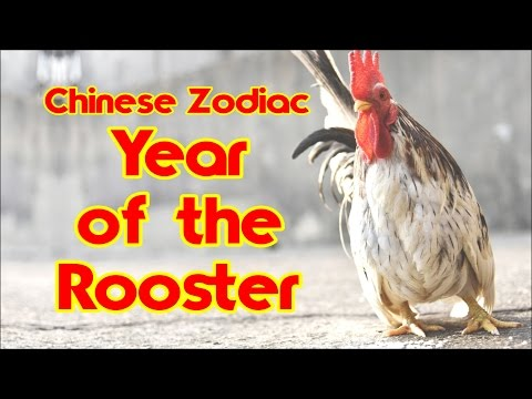 Year Of The Rooster - Discover Your Chinese Zodiac