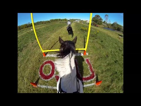 Fast, Scary, Crazy, Wild Costumed Halloween Horse, Rider, and Jumps - BIG Jumps!
