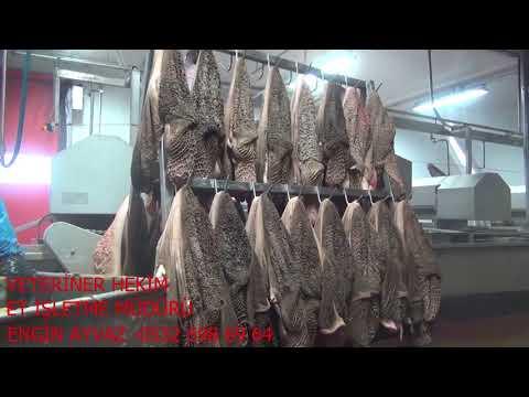 işkembe temizleme makinası        TORKU  TESİSLERİ