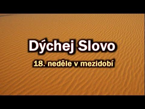 """23. Dýchej Slovo - """"Přátelství"""" (Mt 14,13-21)"""