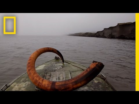 Mammoth Tusk Treasure Hunt | National Geographic