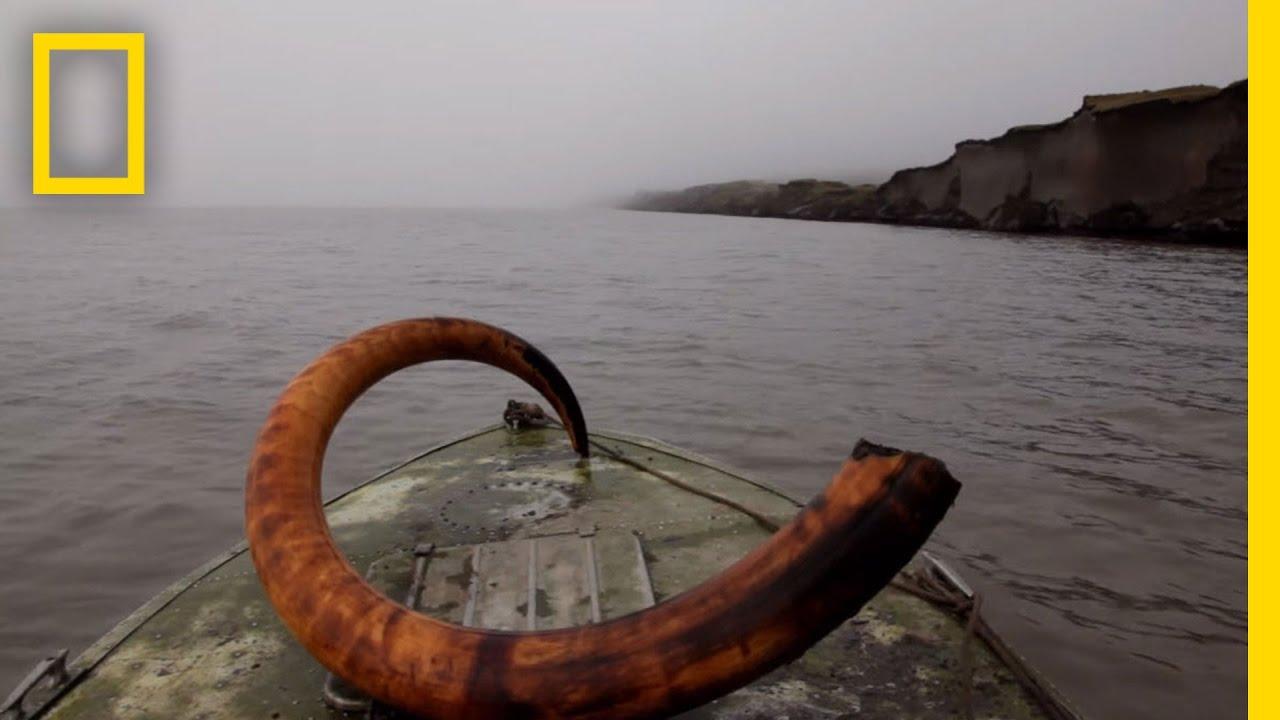 Mammoth Tusk Treasure Hunt | National Geographic