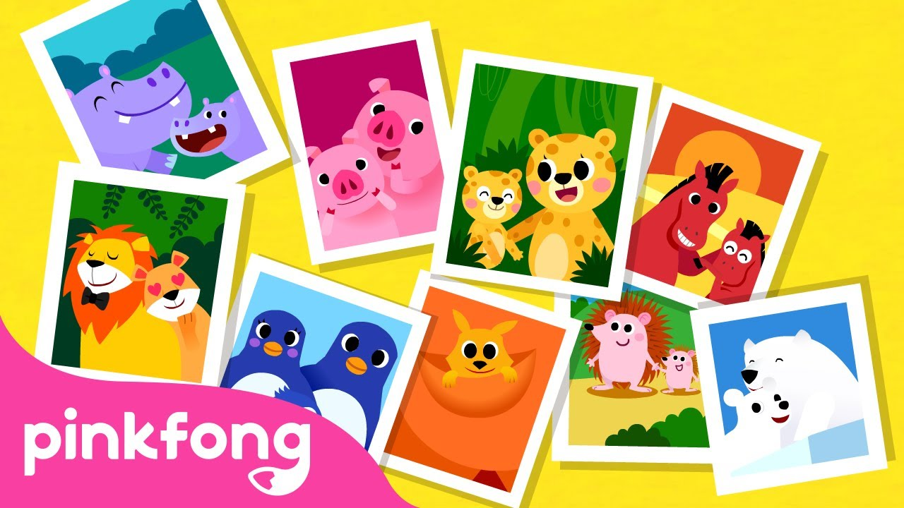 Animal Families | Animal Songs | Learn Animals | Pinkfong Animal Songs for Children