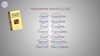 Русский 2 Чередование звуков в корнях слов, которое видно на письме