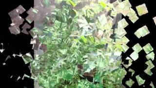 guadalupe monteverde oaxaca
