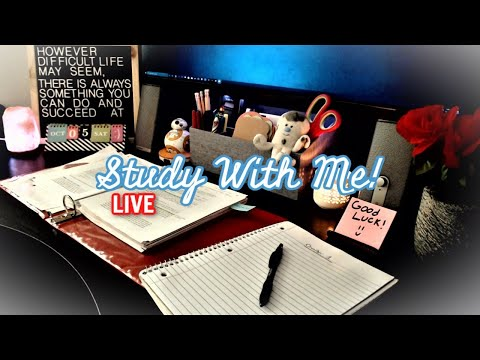 STUDY WITH ME | LIVE 24/7 (50 -10 Pomodoro) | ASMR Rain Ambiance | With Timer & Break Music