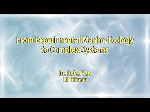UP TALKS | From Experimental Marine Biology to Complex Systems | Dr. Helen Yap