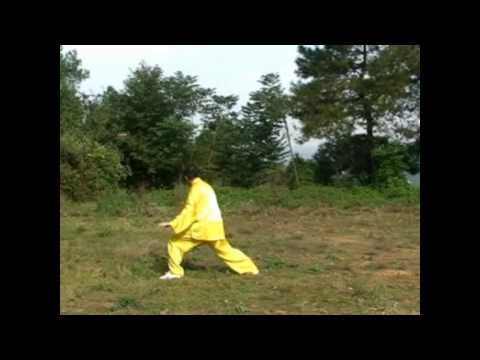 Tai Chi Traditional Chongqing Yang Style Long Form by Master Chen Dexiong