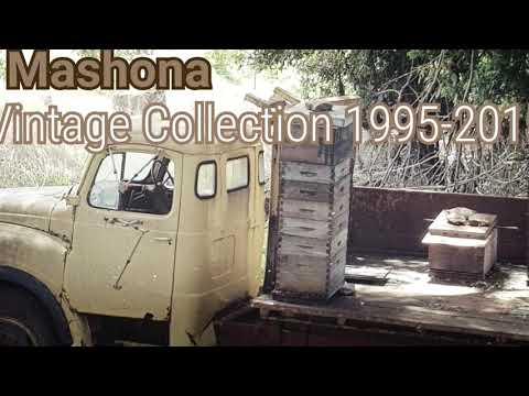 Mashona - Lady of Kingdoms (a vintage High Grade Riddim production)