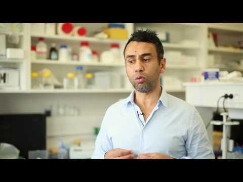 4.13 Theranyx - Les biotechs de Luminy