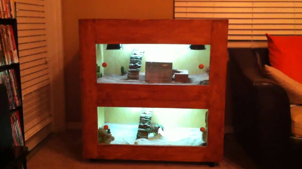 Custom Bearded Dragon Cage Youtube
