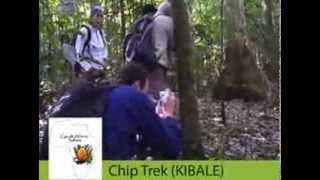 Cycads African Safaris- Explore Uganda & Rwanda