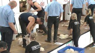Rownd cyn-derfynol 3 Pen Hŷn | Senior Championship Semi Final 3