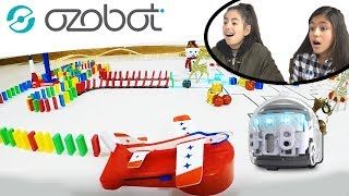 OZOBOT EVO Yumi & Sachi Learn Coding and battle in an EPIC Robot Race with Dominoes