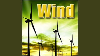 Wind - Dry Gusty Wind, Leaves and Sand Blowing, Weather Wind