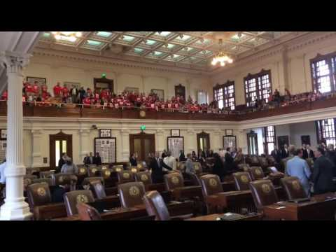 Immigration protest in Texas House