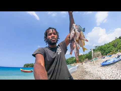 A Day Of Fishing In Rio Nuevo St  Mary Jamaica