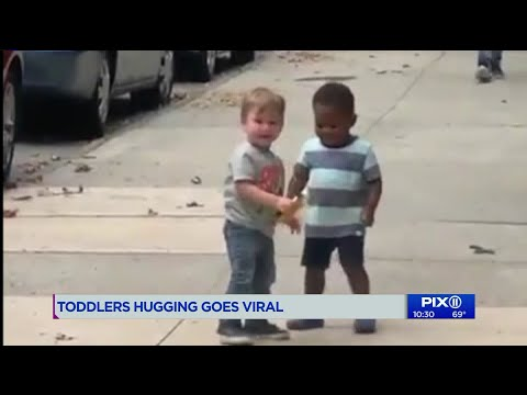 The Morning Rush - Toddler friends can't wait to greet each other
