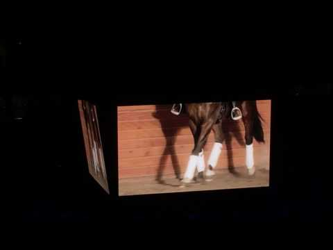 World Cup 2017- Welcome to Omaha Dressage Commercial