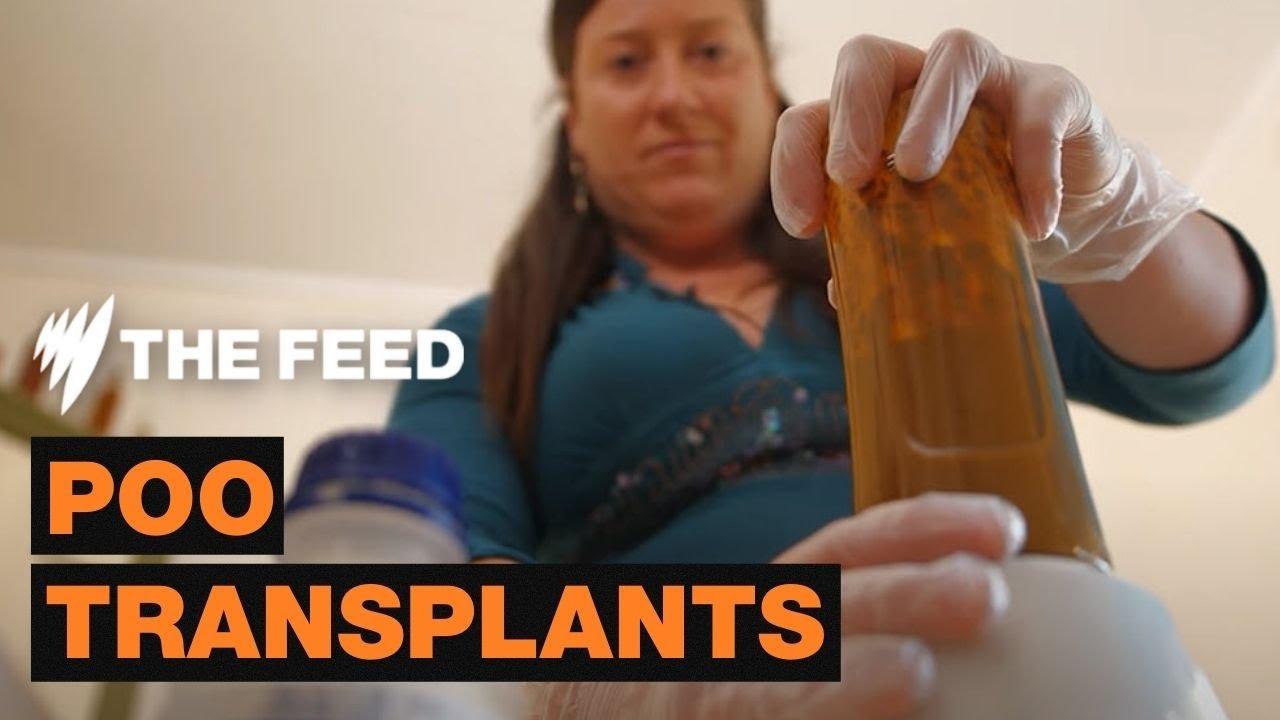 Power of Poop: Faecal Microbiota Transplants - The Feed