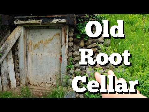 Our 1920's Root Cellar