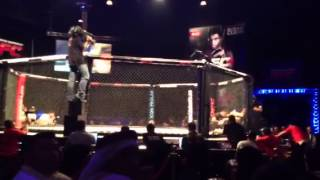 MMA Dubai: Paul Daley KO over BJJ Black Belt Ximbica DFC 4
