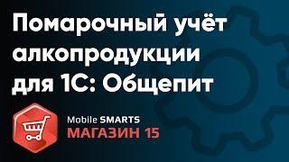 1С: Общепит интеграция с Mobile SMARTS: Магазин 15. ЕГАИС помарочный учет алкопродукции