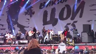 The Hatters - Перемен (Виктор Цой 55 лет/Петербург live, Дворцовая пл., 03.06.2017 г)