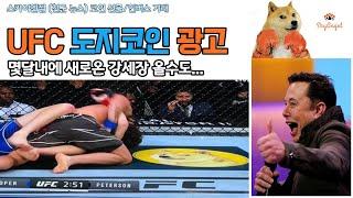 (1분뉴스) UFC 도…