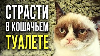 ☢ Радиация в кошачьем наполнителе? Сейчас проверим!